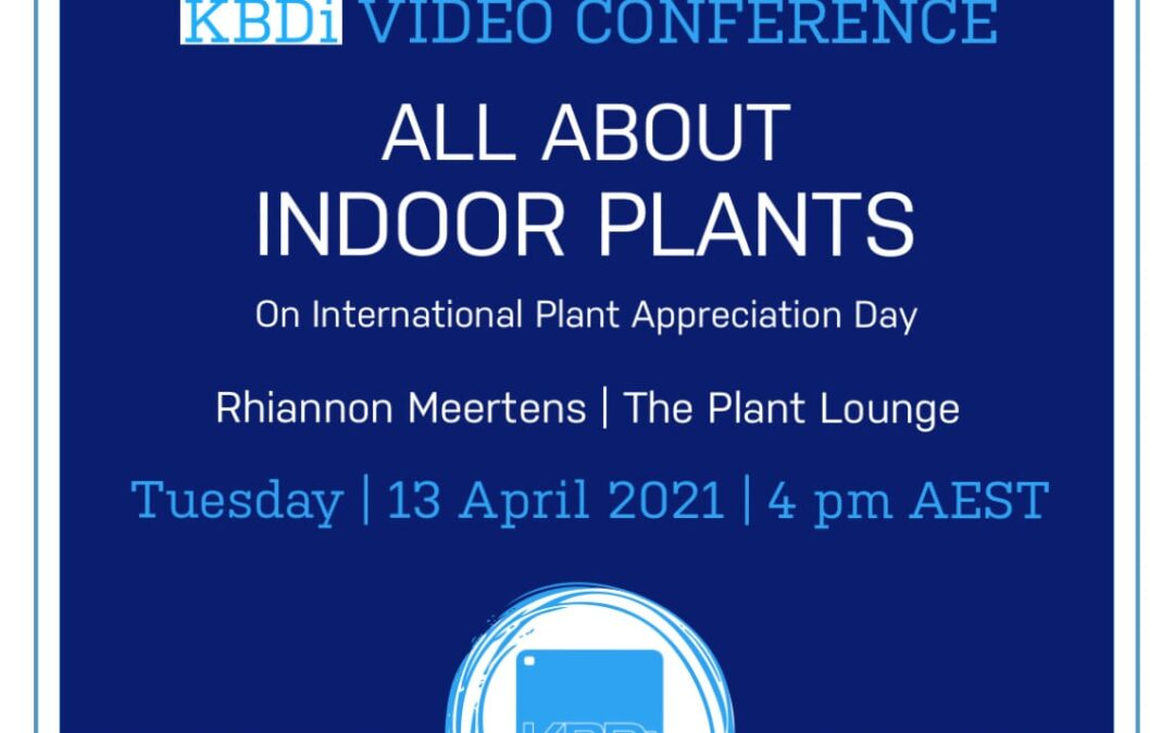 PD Tuesday | All about indoor plants